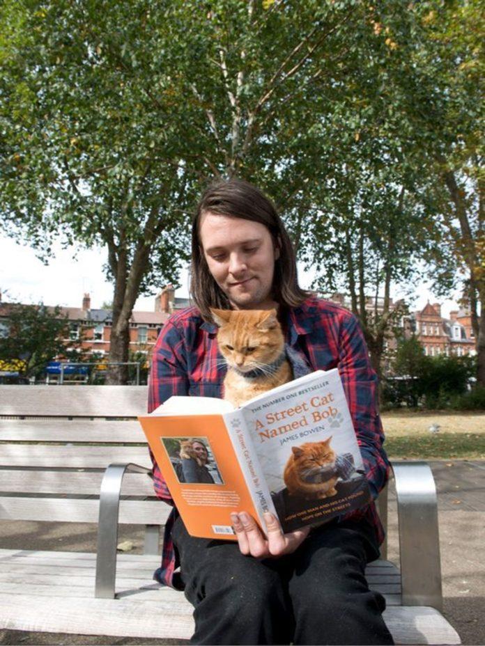 Bir Evsizin Hayatını Değiştiren, Kitaba ve Filme Konu Olan Kedi Bob Öldü