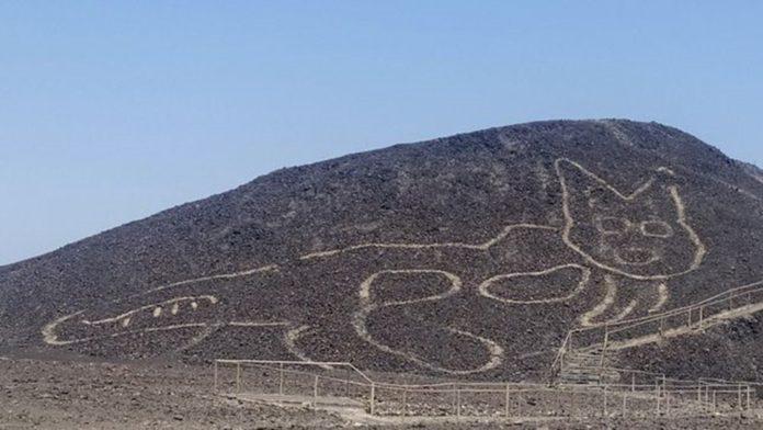 Peru'da Arkeologlar Bir Yamaca Çizilmiş 2 Bin Yıllık Kedi Figürü Keşfetti