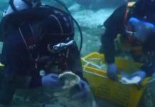 Denizin Altında 900 Yıllık Kayıp Hazine Keşfedildi