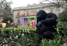 ABD'de Mardi Gras Festivali İptal Edildi