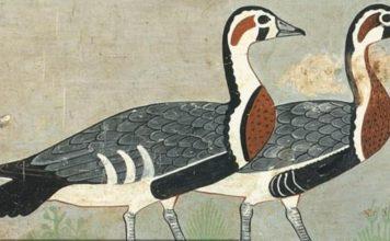 """Antik Mısır'ın """"Mona Lisa""""sı Binlerce Yıl Önce Soyu Tükenen Hayvanı Gün Yüzüne Çıkardı"""