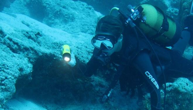 Arkeologlar Su Altında 17 İşaretle Yeni Bir Dil Geliştirdi